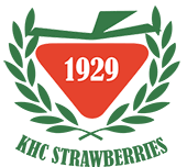 KHC Strawberries